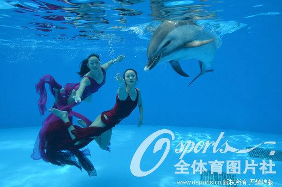四川省成都市成都海昌极地海洋世界,花样游泳世界冠军蒋文文和老公唐