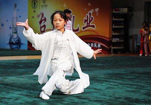 2016年第五届厦门国际武术大赛举行