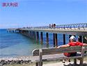 探寻澳洲大洋路