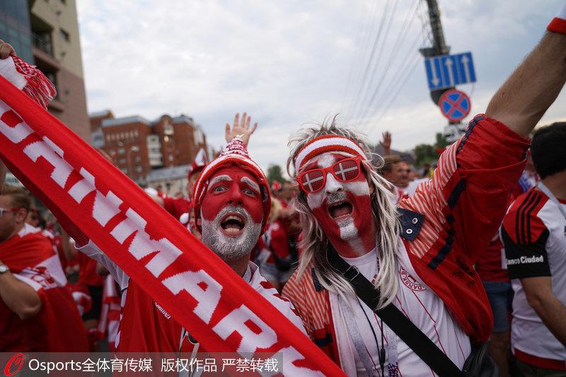 丹麦球迷疯狂的呐喊