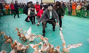 浙江江山市举办新春农民运动会